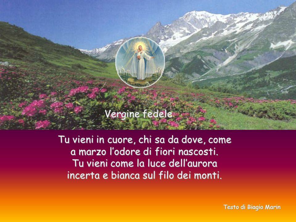 Vergine fedele