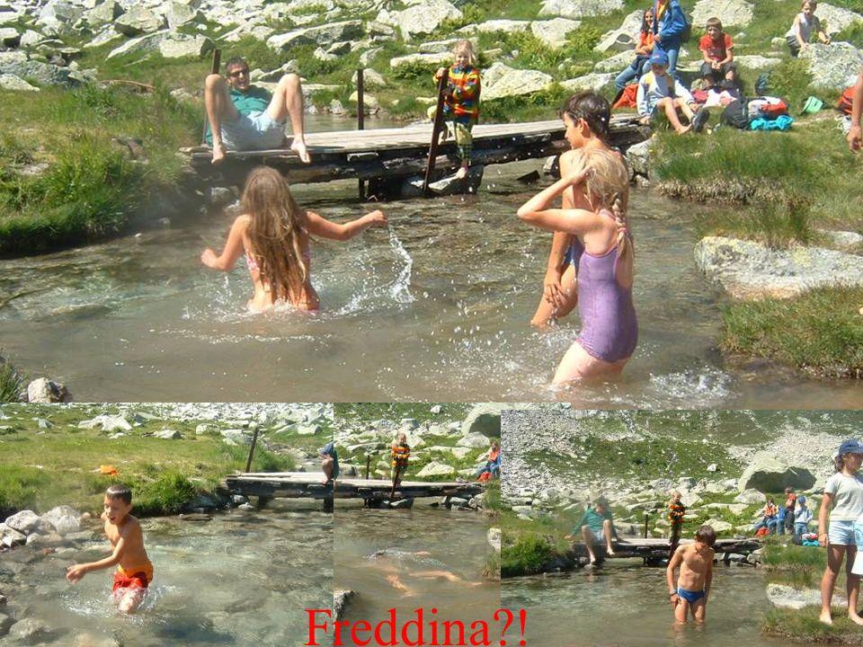 Freddina !