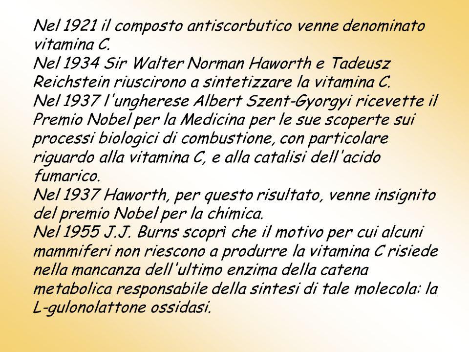 Nel 1921 il composto antiscorbutico venne denominato