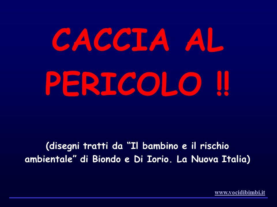 CACCIA AL PERICOLO !! (disegni tratti da Il bambino e il rischio ambientale di Biondo e Di Iorio. La Nuova Italia)