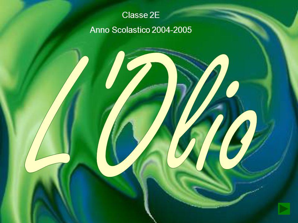 Classe 2E Anno Scolastico 2004-2005 L Olio
