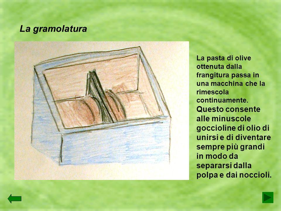 La gramolaturaLa pasta di olive ottenuta dalla frangitura passa in una macchina che la rimescola continuamente.