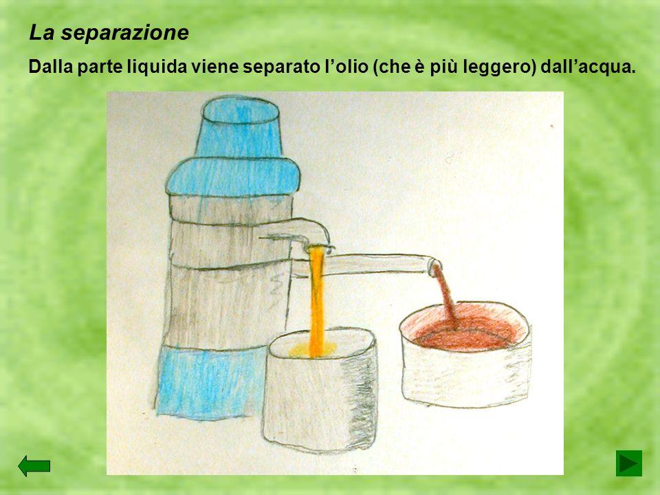La separazione Dalla parte liquida viene separato l'olio (che è più leggero) dall'acqua.