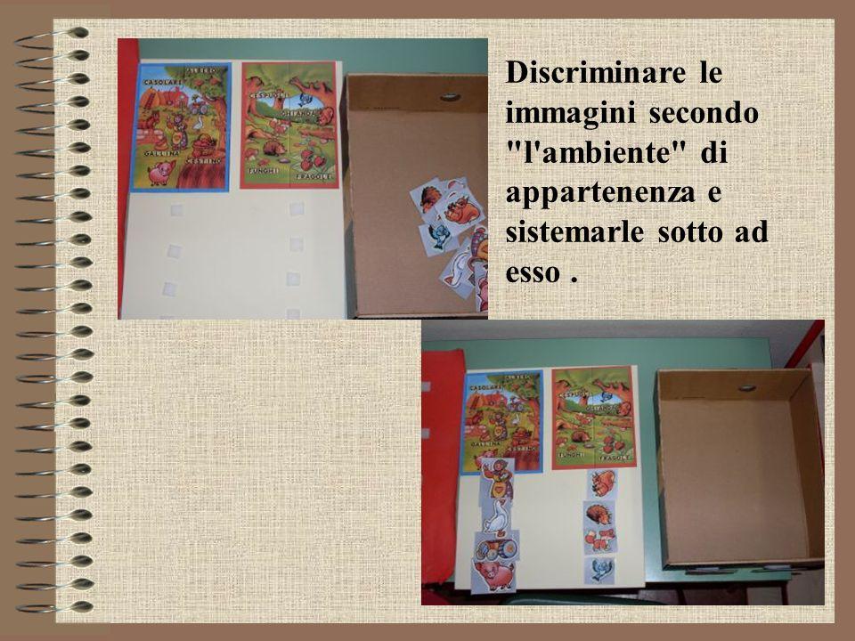 Discriminare le immagini secondo l ambiente di appartenenza e sistemarle sotto ad esso .