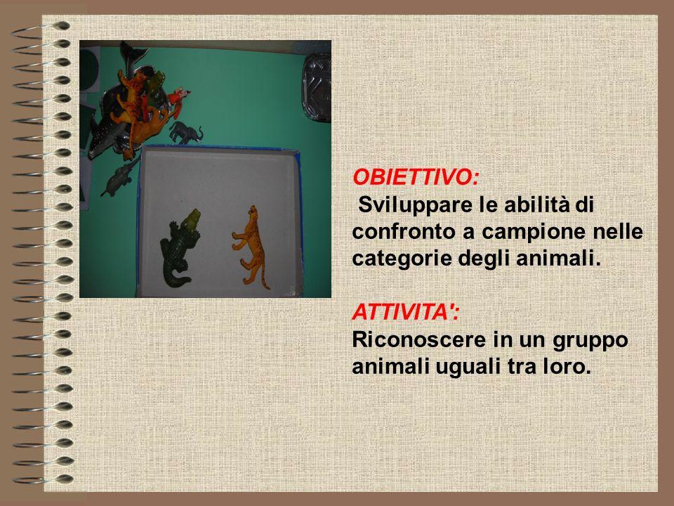 OBIETTIVO: Sviluppare le abilità di confronto a campione nelle categorie degli animali. ATTIVITA :