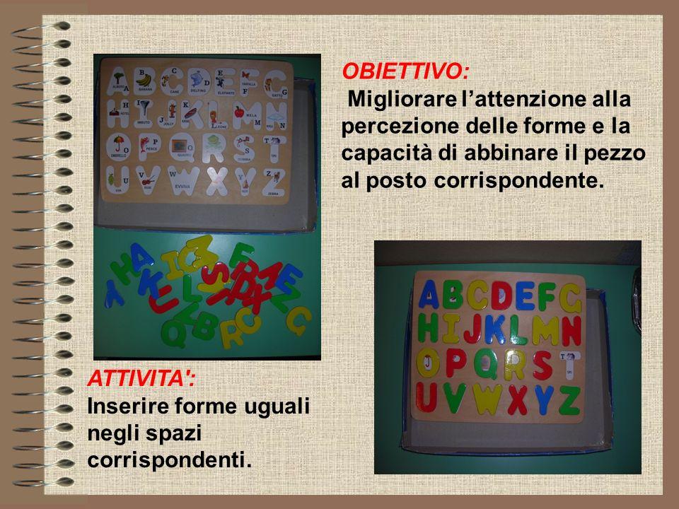 OBIETTIVO: Migliorare l'attenzione alla percezione delle forme e la capacità di abbinare il pezzo al posto corrispondente.