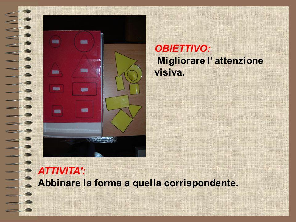 OBIETTIVO: Migliorare l' attenzione visiva. ATTIVITA : Abbinare la forma a quella corrispondente.