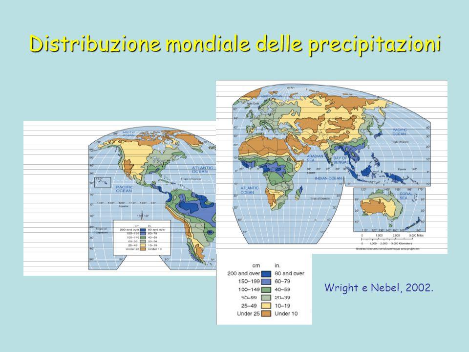 Distribuzione mondiale delle precipitazioni