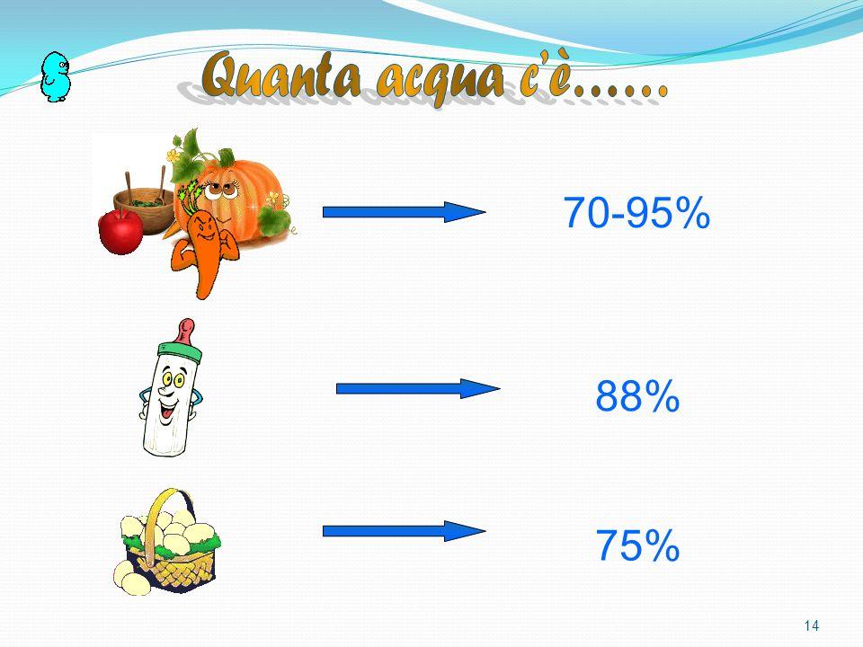 Quanta acqua c'è…… 70-95% 88% 75%