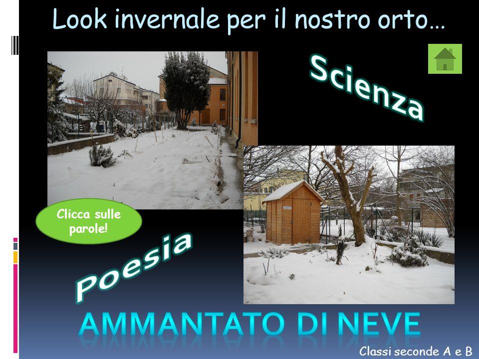 Look invernale per il nostro orto…