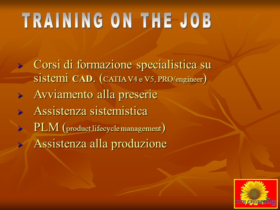 TRAINING ON THE JOB Corsi di formazione specialistica su sistemi CAD. (CATIA V4 e V5, PRO/engineer)