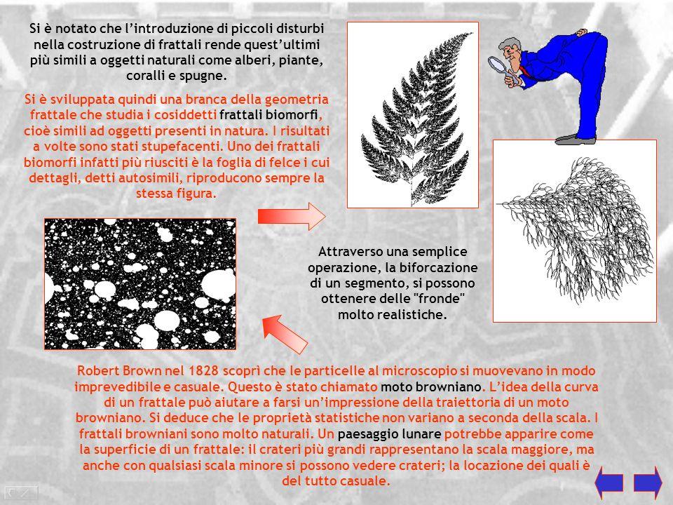 Si è notato che l'introduzione di piccoli disturbi nella costruzione di frattali rende quest'ultimi più simili a oggetti naturali come alberi, piante, coralli e spugne.