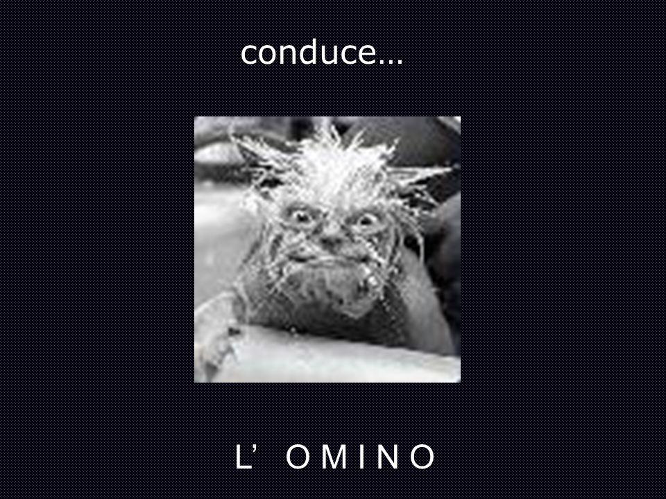 conduce… L' O M I N O