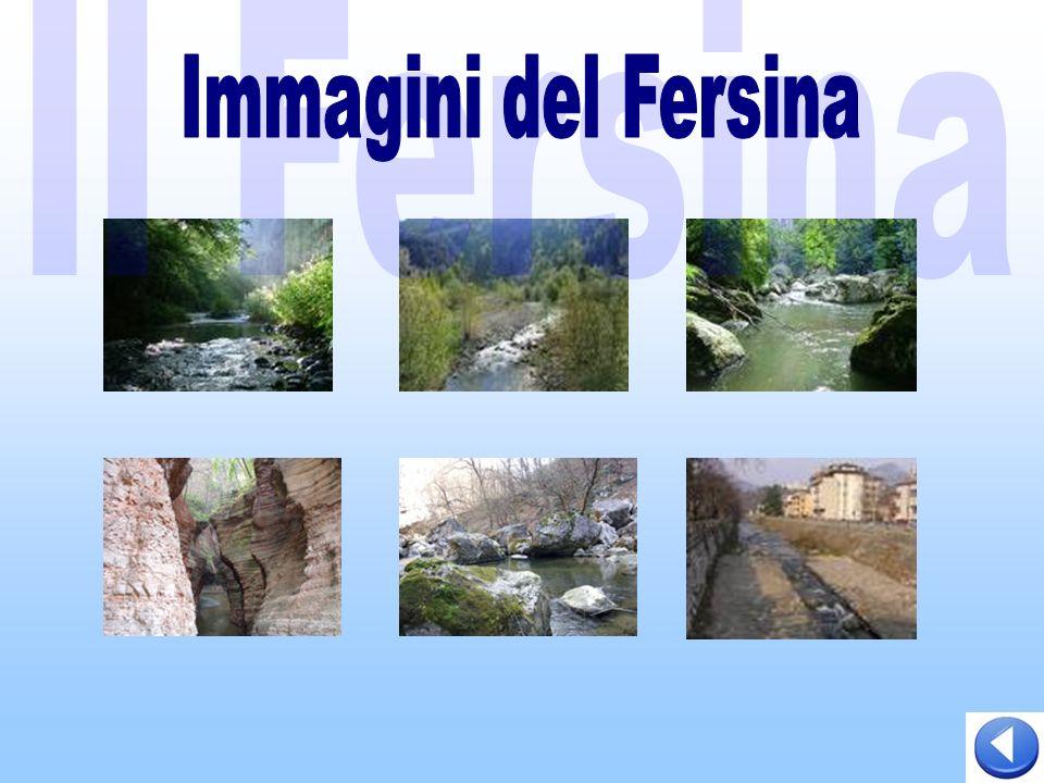 Il Fersina Immagini del Fersina