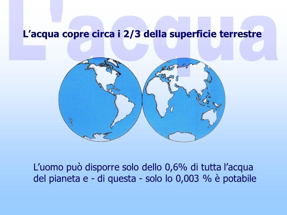 L'acqua copre circa i 2/3 della superficie terrestre