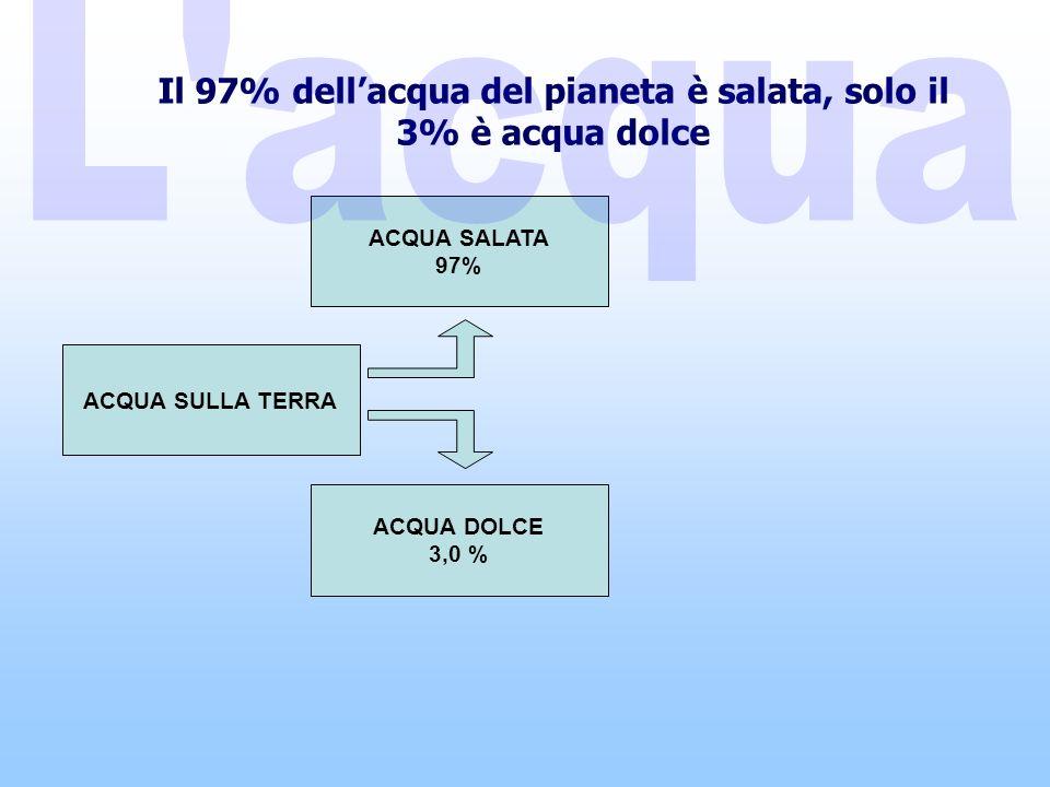 Il 97% dell'acqua del pianeta è salata, solo il 3% è acqua dolce