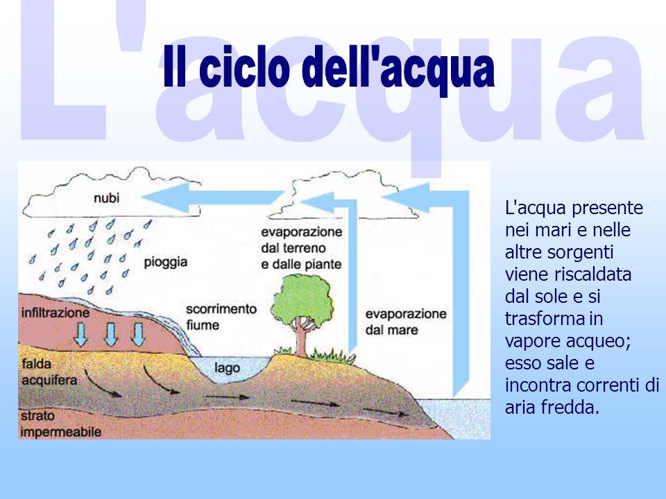 L acqua Il ciclo dell acqua