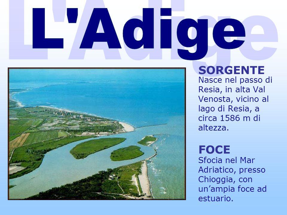 L Adige L Adige SORGENTE FOCE