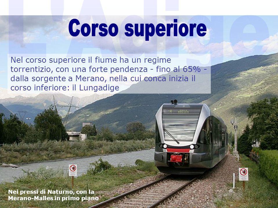 L Adige Corso superiore