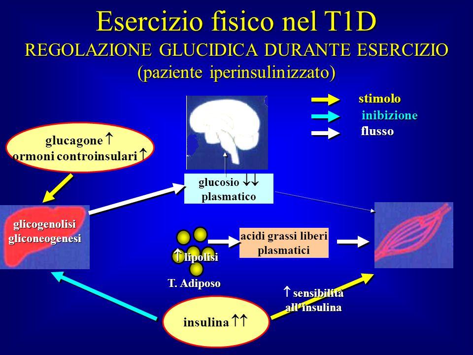 ormoni controinsulari   sensibilità all'insulina