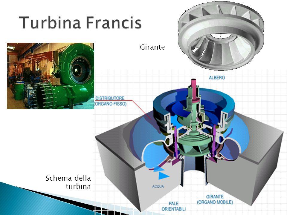 Turbina Francis Girante Schema della turbina