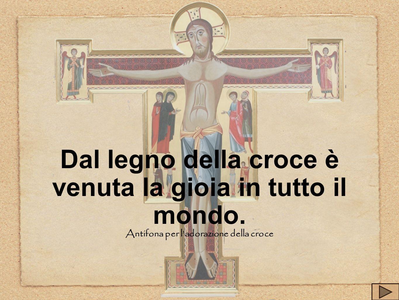 Dal legno della croce è venuta la gioia in tutto il mondo