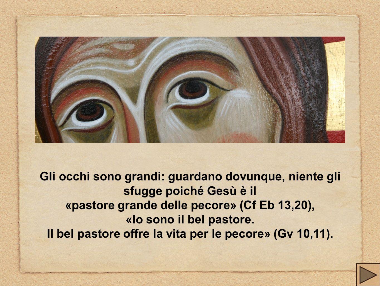 «pastore grande delle pecore» (Cf Eb 13,20), «Io sono il bel pastore.