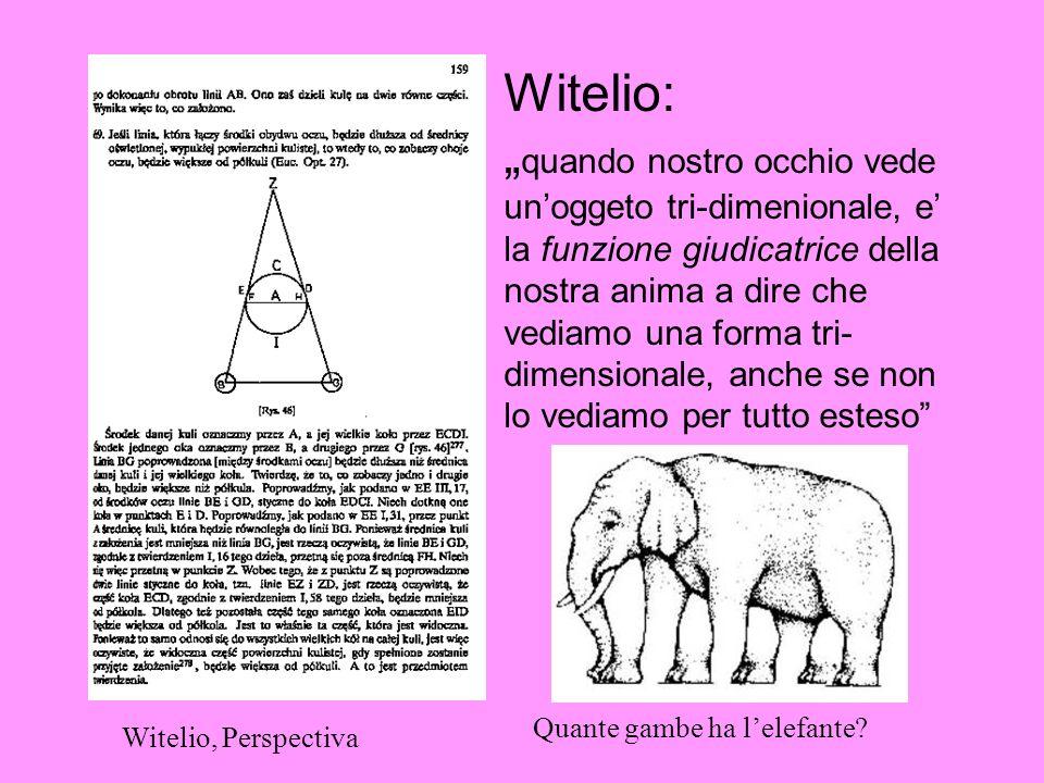 Witelio: