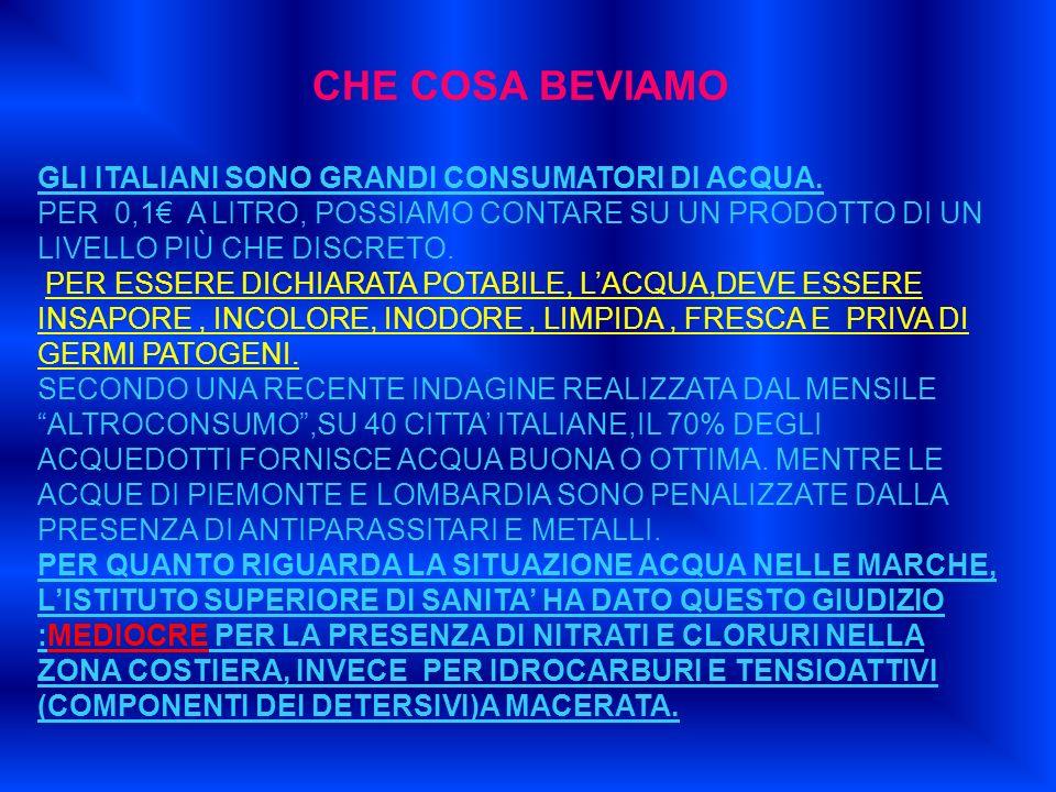 CHE COSA BEVIAMO GLI ITALIANI SONO GRANDI CONSUMATORI DI ACQUA.