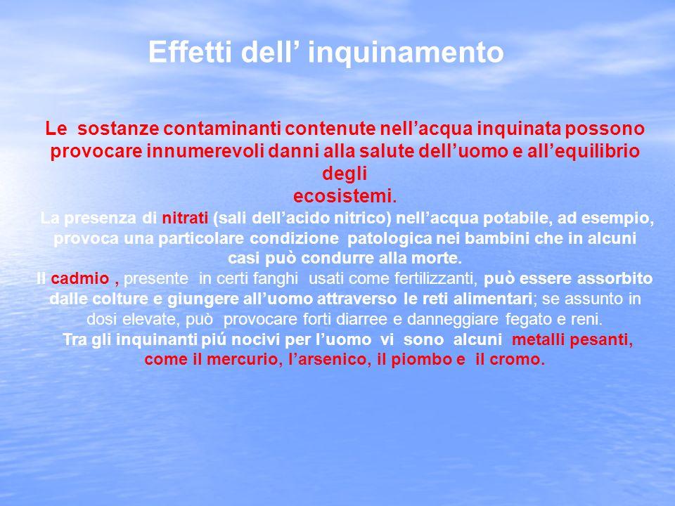 Le sostanze contaminanti contenute nell'acqua inquinata possono