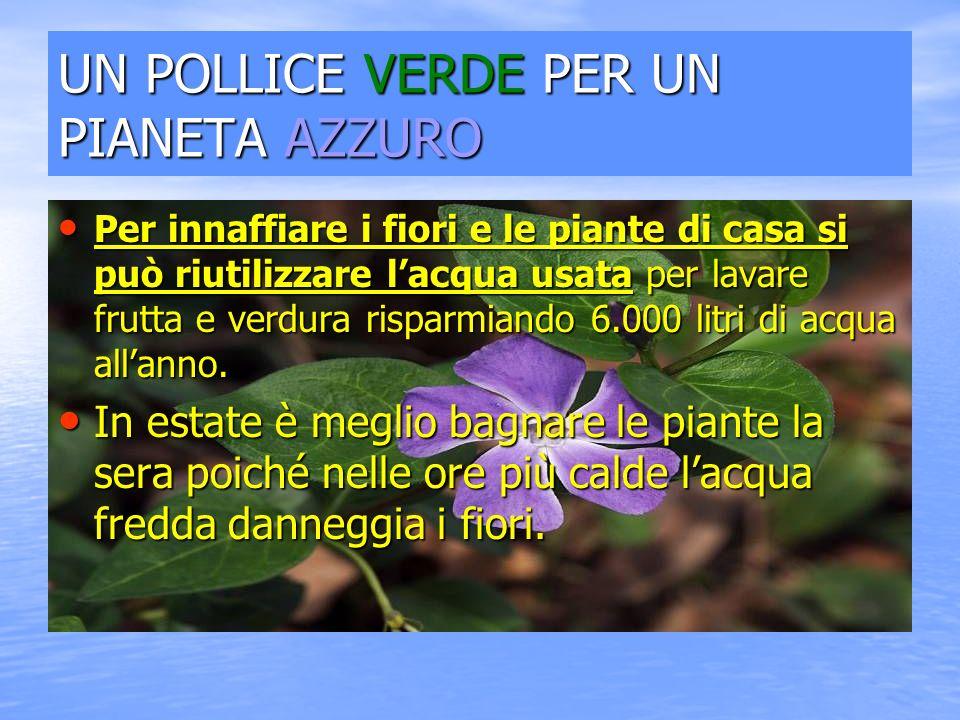 UN POLLICE VERDE PER UN PIANETA AZZURO