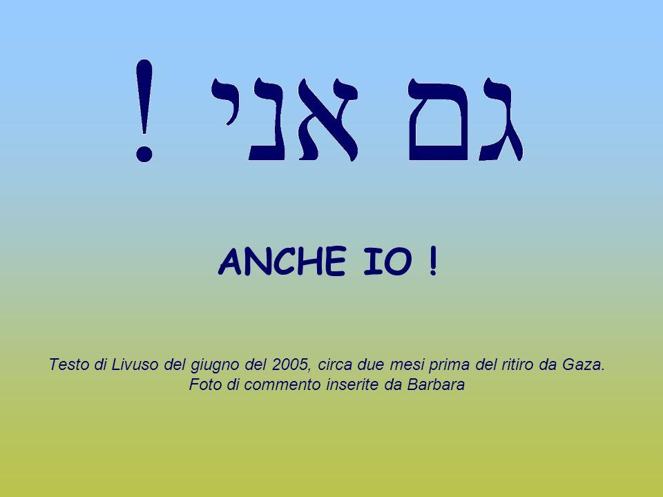 ANCHE IO . Testo di Livuso del giugno del 2005, circa due mesi prima del ritiro da Gaza.