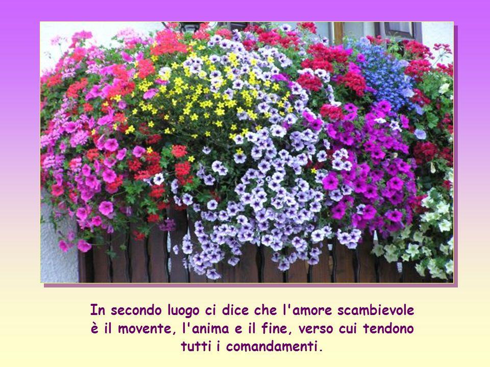 In secondo luogo ci dice che l amore scambievole è il movente, l anima e il fine, verso cui tendono tutti i comandamenti.