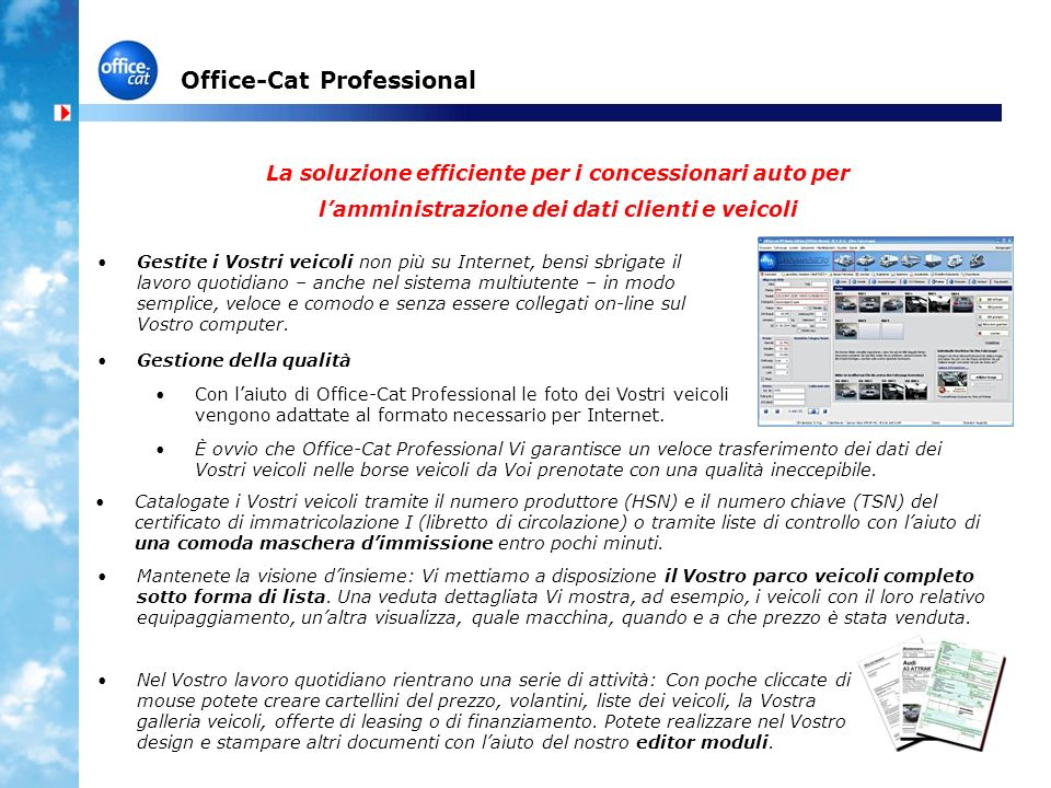 Office-Cat Professional