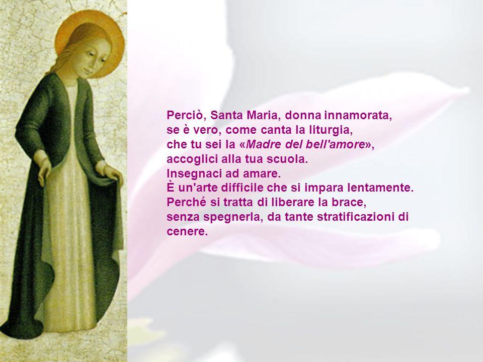 Perciò, Santa Maria, donna innamorata,