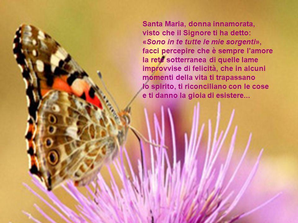 Santa Maria, donna innamorata,