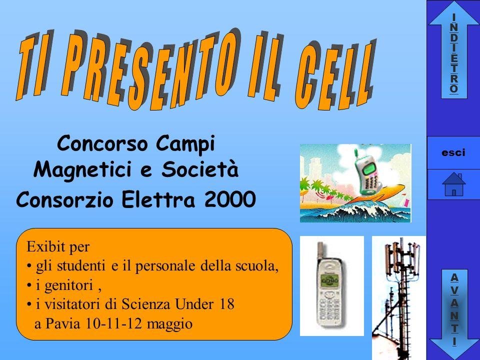 Concorso Campi Magnetici e Società Consorzio Elettra 2000