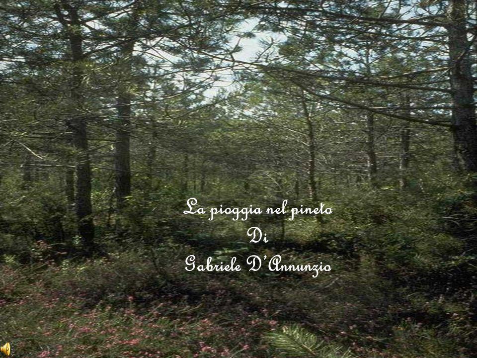 La pioggia nel pineto Di Gabriele D'Annunzio