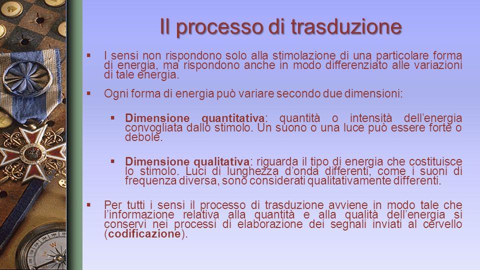 Il processo di trasduzione