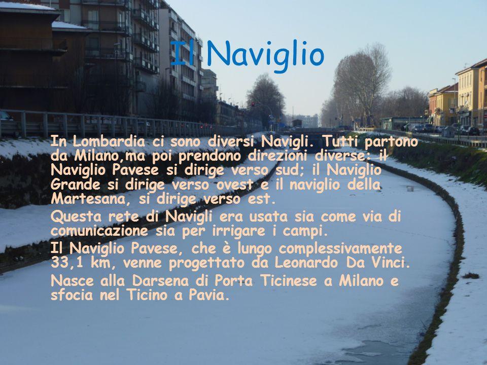 Il Naviglio