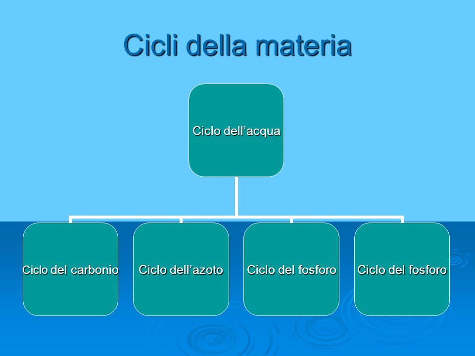 Cicli della materia