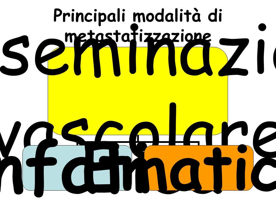 Principali modalità di metastatizzazione