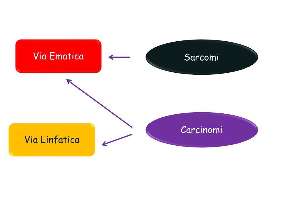 Via Ematica Sarcomi Carcinomi Via Linfatica