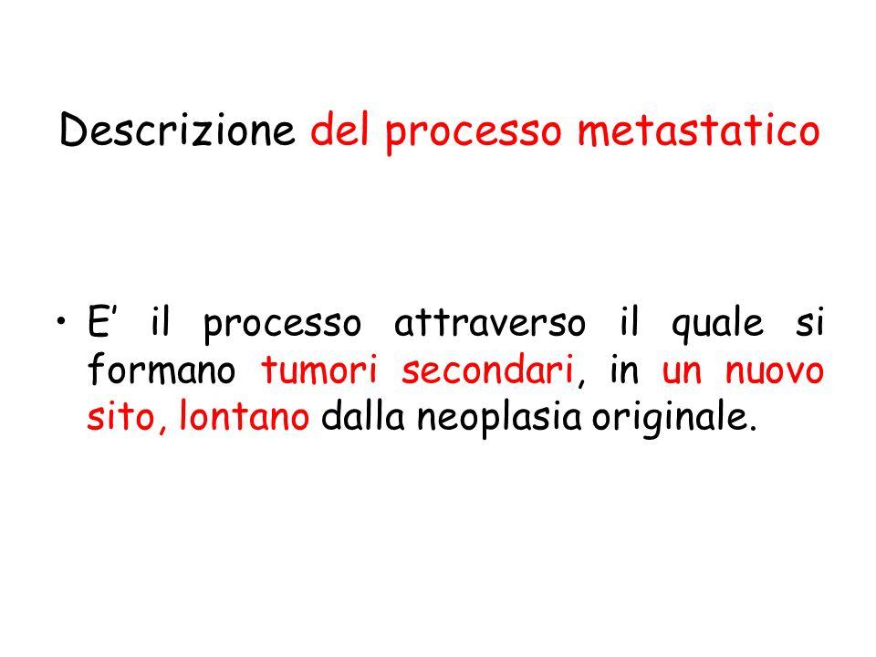 Descrizione del processo metastatico
