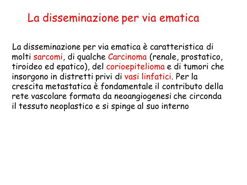 La disseminazione per via ematica
