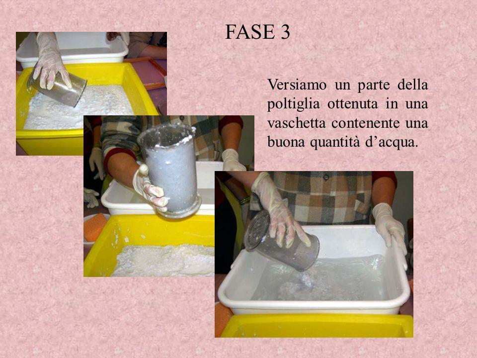FASE 3 Versiamo un parte della poltiglia ottenuta in una vaschetta contenente una buona quantità d'acqua.