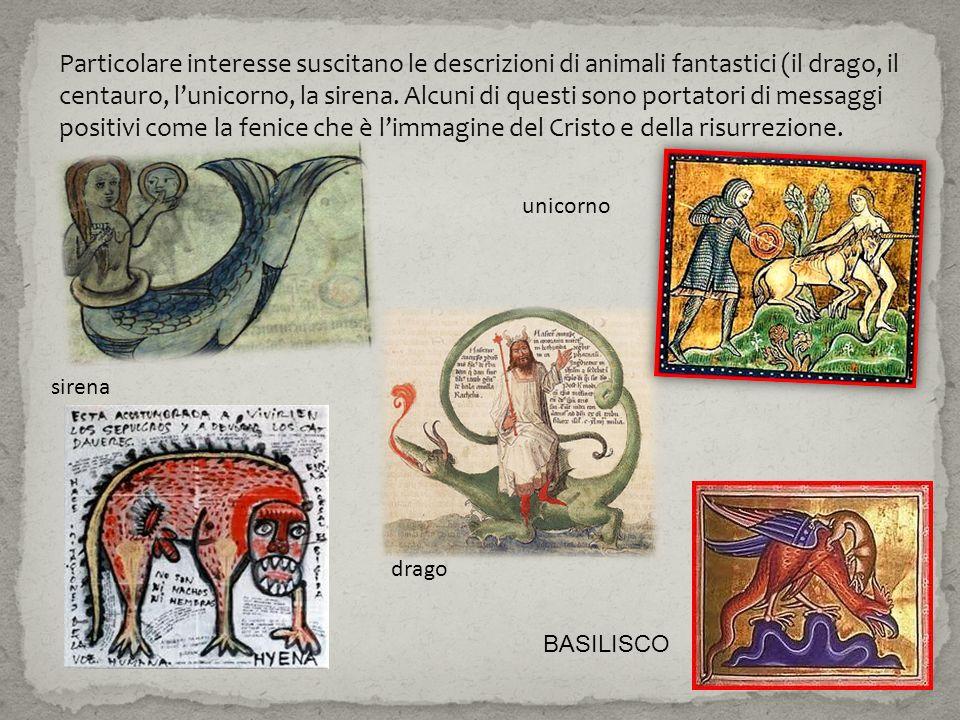 Particolare interesse suscitano le descrizioni di animali fantastici (il drago, il centauro, l'unicorno, la sirena. Alcuni di questi sono portatori di messaggi positivi come la fenice che è l'immagine del Cristo e della risurrezione.
