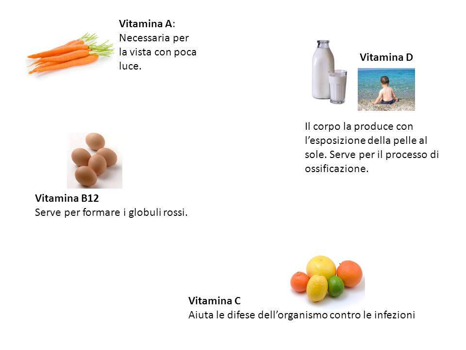 Vitamina A: Necessaria per la vista con poca luce. Vitamina D.
