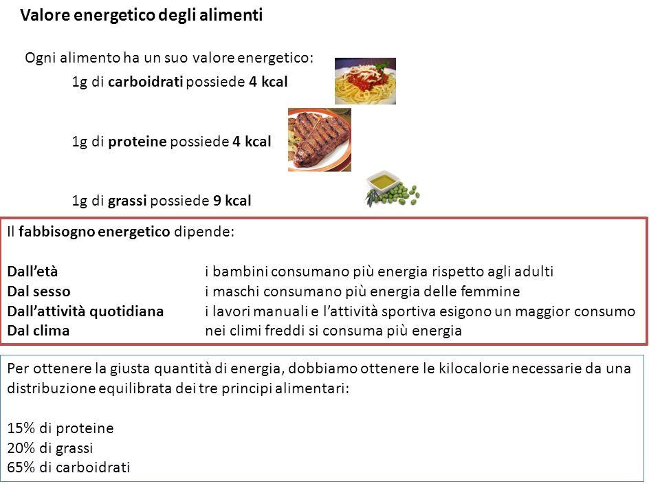 Valore energetico degli alimenti