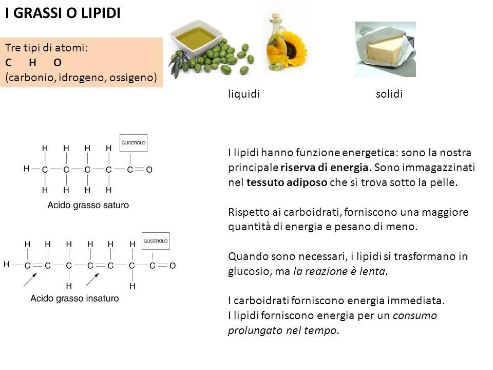I GRASSI O LIPIDI Tre tipi di atomi: C H O